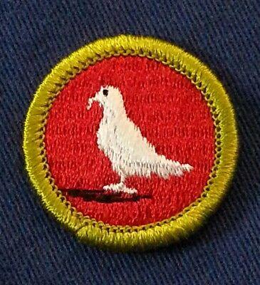 PLASTIC BACK  A00065 1972-2002 BSA PIGEON RAISING Merit Badge Type H