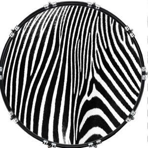 aquarian 22 kick bass drum head graphical image front skin zebra 2 ebay. Black Bedroom Furniture Sets. Home Design Ideas