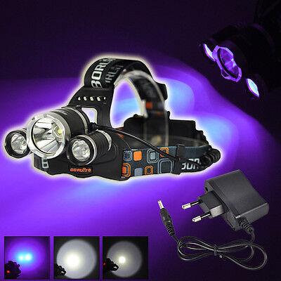 BORUiT 12000LM 3xXML T6 White+2R2 395nm UV LED Headlamp Head Light Torch+Charger