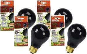 4 Pack Zilla Reptile Terrarium Heat Lamp Incandescent