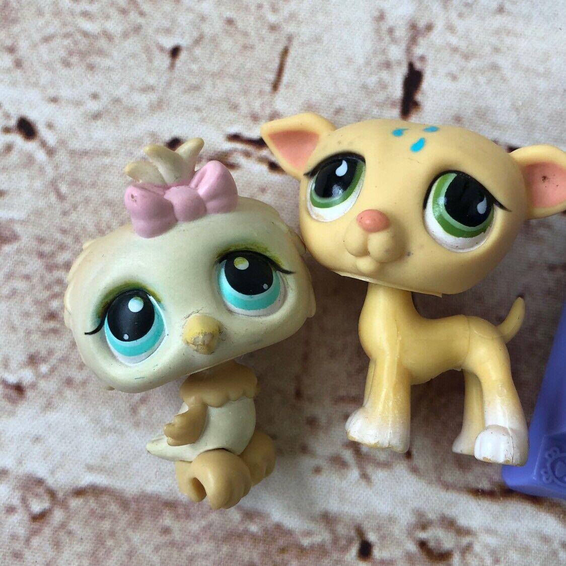 Lot 6 Pcs Littlest Pet Shop Toy Toy Toy Cat Lizard Bird 407ba3