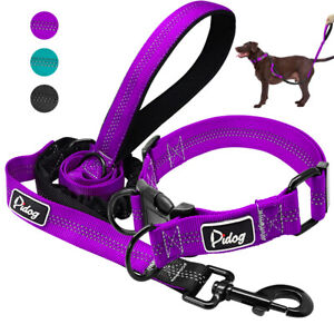 Nylon-Reflective-Dog-Collar-amp-Leads-for-Small-Large-Dogs-Training-Purple-Black