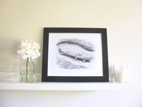 A SHALLOW LIE TROUT Drawing Art Print Fishing Gift for Fly Fisherman Angler