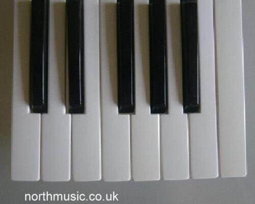 Yamaha DX11 Replacement Key