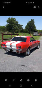 Ford mustang antique