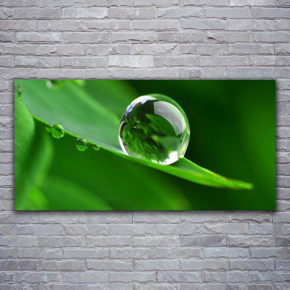 Photo sur toile Tableau Image Impression 120x60 Floral Feuille Goutte D'eau
