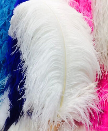 50-100pcs White Natural Ostrich Feathers 6-28 inch//15-70 cm carnival Diy costume