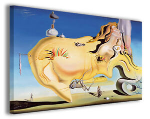 Dettagli su Quadri famosi Salvador Dali\' vol XIV Stampa su tela arredo  moderno arte design