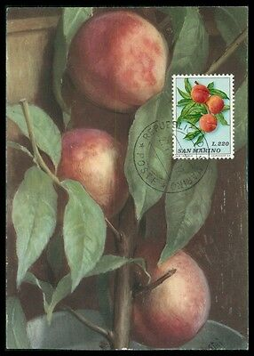 San Marino Mk 1973 Flora Obst Pfirsich Fruit Carte Maximum Card Mc Cm Am50 Tropf-Trocken Motive
