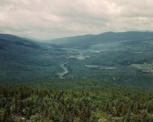 View of White Mountains National Forest in New Hampshire 1943 New 8x10 Photo