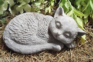 Latex Cat MOLD textured very detailed mould With Plastic Backup