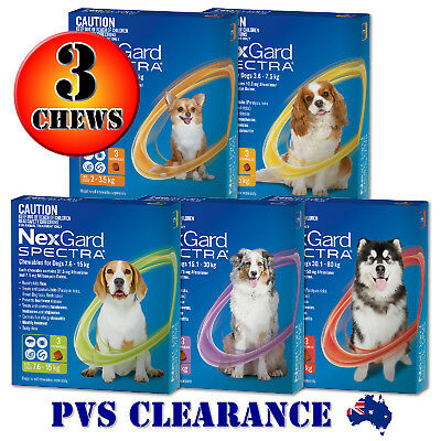 Nexgard Spectra 3 For All Size Dogs 3 Pack Orange Yellow