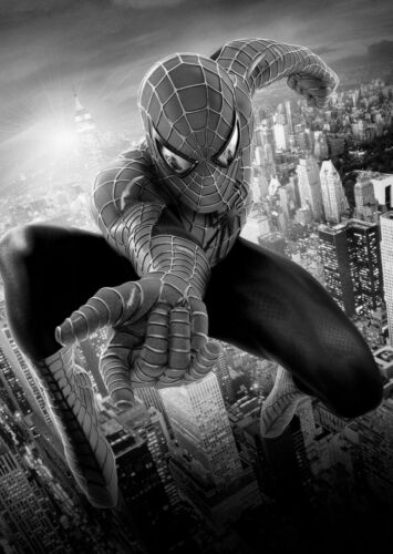 Spiderman Large Poster Art Print Black /& White Card or Canvas