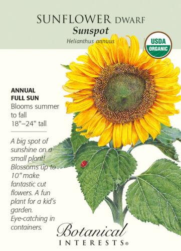 Sunspot Sunflower Seeds Organic 2 grams