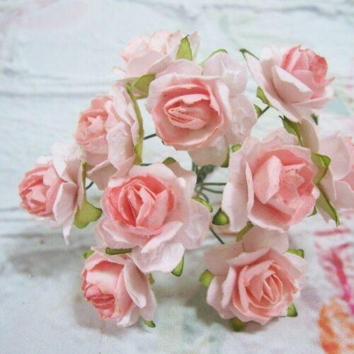 10 x papel de morera Rústico Rosas Melocotón Adornos elaboración de Tarjetas 2.5cm
