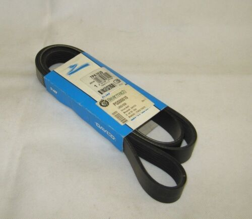 Land Rover Range Rover L322 Primary Drive Belt Dayco PQS00010