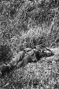WW2 - Photo - Soldat allemand mort dans le bocage normand - France - État : Neuf: Objet neuf et intact, n'ayant jamais servi, non ouvert. Consulter l'annonce du vendeur pour avoir plus de détails. ... Type: Impression numérique Nombre de pices: 5 Format (cm): 10x15 Authenticité: Retirage Période: De 1940 1990 - France