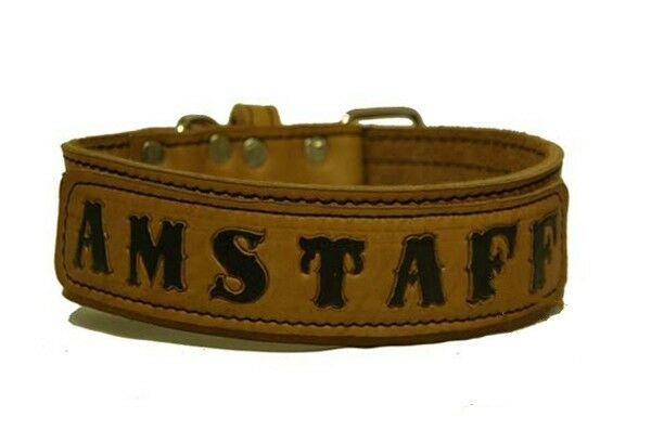 On The Staff American Staffordshire Terrier Leather Collar 5cm wide Pit Bull