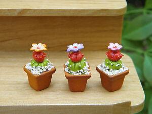 Miniature-Dollhouse-FAIRY-GARDEN-Accessories-Set-3-Cactus-Flower-Pots-Plants
