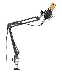 Profi-Studio-Mikrofon-Kondensator-Aufnahme-Microphone-Mikrofonarm-Windschutz-Set