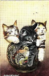 CJ11Vintage PostcardPotted Mischief Kittens in a vase - <span itemprop=availableAtOrFrom>Hove, United Kingdom</span> - CJ11Vintage PostcardPotted Mischief Kittens in a vase - Hove, United Kingdom