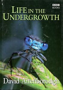 Attenborough David LIFE IN THE UNDERGROWTH Hardback BOOK - <span itemprop=availableAtOrFrom>Llanwrda, United Kingdom</span> - Items may be returned within seven days if found not to be as described. Returns for reasons other than this must be by prior arrangement. Most purchases from business sellers are protec - Llanwrda, United Kingdom
