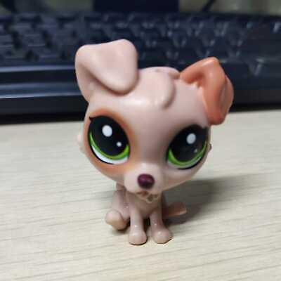 Littlest Pet Shop Lot 6 Doctor Vet Clinic Accessory w Random Dog Exclusive RB
