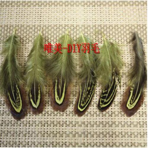 Pheasant Tail Feathers DIY Decora Wholesale 10-500PCS 5-10cm//2-4inche
