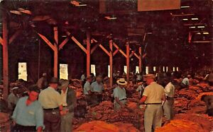 INTERIOR-OF-TOBACCO-WAREHOUSE-DURING-AUCTION-SALE-PUBLISHED-ROANOKE-VA-POSTCARD