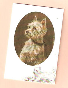 Details about West Highland White Terrier Notecards Note Card Westie by  Mick Cawston Pack 5 b
