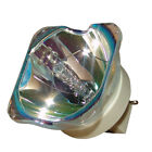 Original Philips Projector Lamp Replacement for Sony VPL-VW1100ES (Bulb Only)