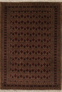 3-039-x4-039-Geometric-Balouch-Afghan-Oriental-Area-Rug-Hand-Knotted-All-Over-Carpet