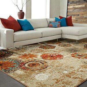 Indoor Outdoor Area Rug Patio Porch Earth Tone Nylon Red