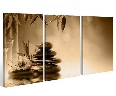Leinwand 3 tlg. Steine Blume Wasser Bambus Stein Wellness Bilder Wandbild 9A430
