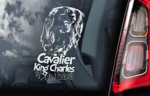 Cavalier-King-Charles-Spaniel-Coche-Ventana-Pegatina-Perro-a-Bordo-Signo-V03
