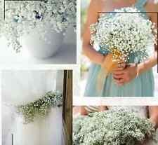 5 Pc Baby's Breath White Gypsophila Silk Wedding Flowers Centerpieces Fillers