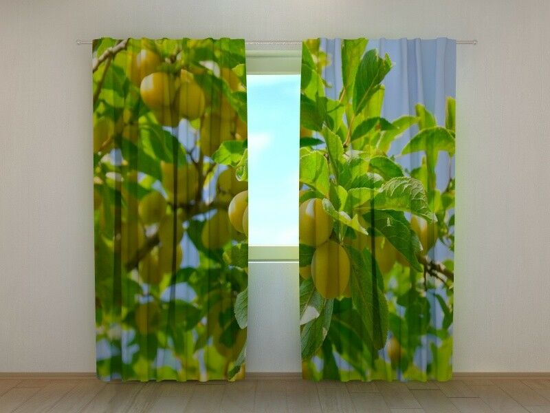 Curtain with Apricots Print Wellmira Ready Made 3D Printed Dining Room Kitchen