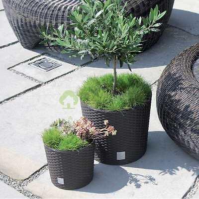 HQ Flower Pot Plant Rattan Style Planter 4 sizes 4 colours Plants pots garden