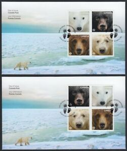 BEARS-Two-OFDCs-FDCs-Type-I-amp-II-Variety-Grizzly-Polar-bear-Canada-2019