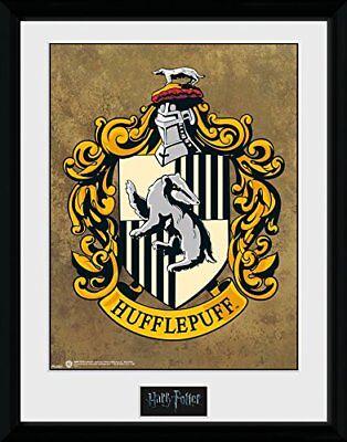 Harry Potter Hufflepuff Wizarding World Framed Poster Print 40x30cm12x16 in