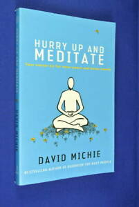 HURRY-UP-AND-MEDITATE-David-Michie-MEDITATION-BOOK-Inner-Peace-amp-Better-Health