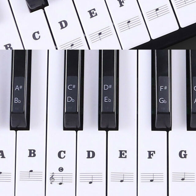 1Set Piano Keyboard Music Note Stickers Learn To Play Keynotes 88/61/54/49 Key R