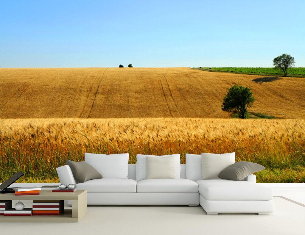 3D Hügeligen Weizenfeldern18 Fototapeten Wandbild Fototapete Bild Tapete Familie