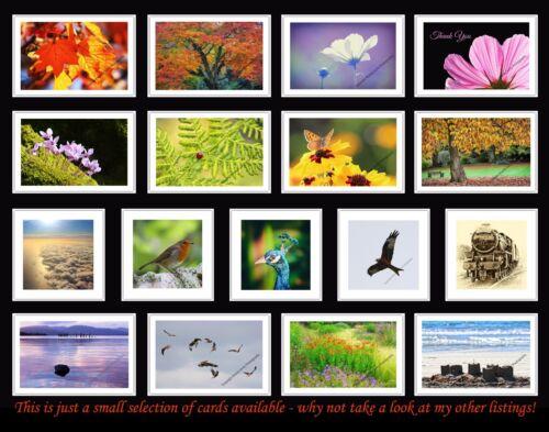 River Llugwy Betws-y-Coed Wales Greetings Card Birthday // Blank Notelet