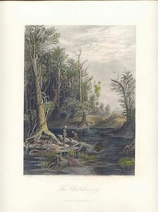 USA-United-States-The-Chickahominy-Drawing-W-L-Sheppard-Gravur-W-Wellstood