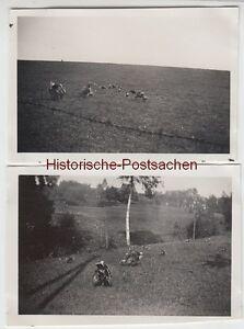(f12819) Orig. Photo Ancien Paire Est Assis Dans Le Jardin à Table 1934-afficher Le Titre D'origine
