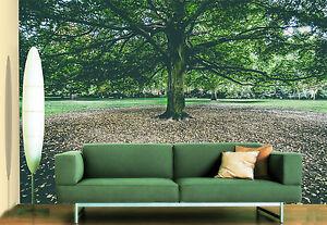 3d Bordée D'arbres Photo Papier Peint En Autocollant Murale Plafond Chambre Art