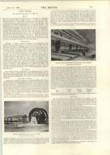 1898 Angelo e driefonteine GRANAGLIE pianta comune BATTERIA Goldfields Coach