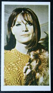 Sandy-Shaw-1960-039-s-Pop-Star-Eurovision-Song-Contest-Photo-Card-EXC