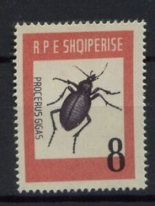 Albania-1963-SG-744-8l-Insect-MH-Cat-6-50